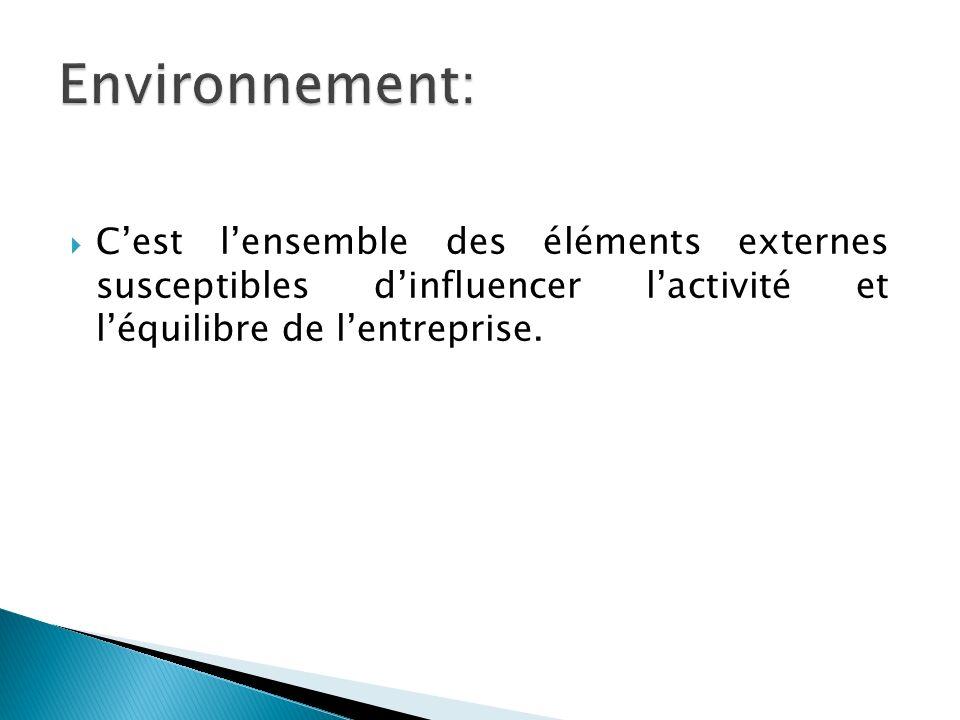 Environnement: C'est l'ensemble des éléments externes susceptibles d'influencer l'activité et l'équilibre de l'entreprise.