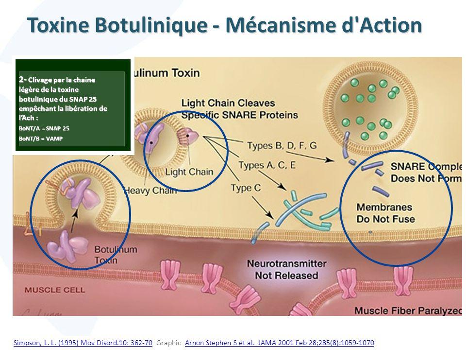 Toxine Botulinique - Mécanisme d Action