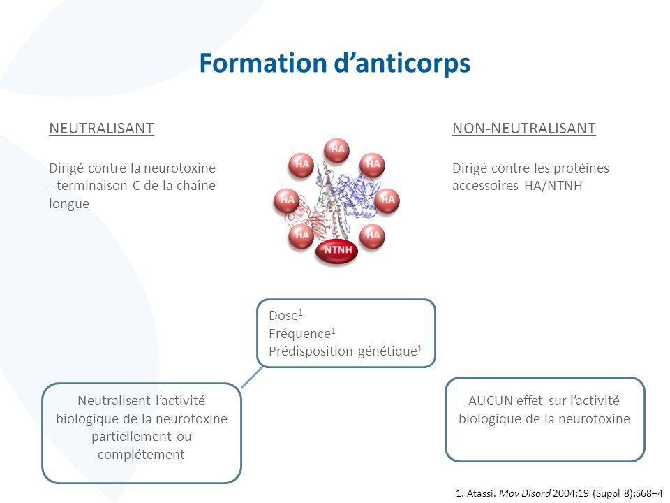 Formation d'anticorps