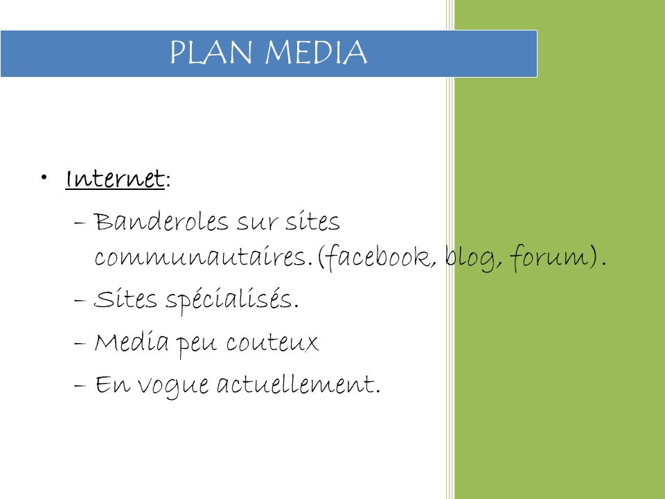PLAN MEDIA Internet: Banderoles sur sites communautaires.(facebook, blog, forum). Sites spécialisés.