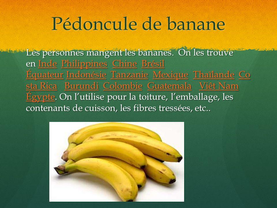 Pédoncule de banane
