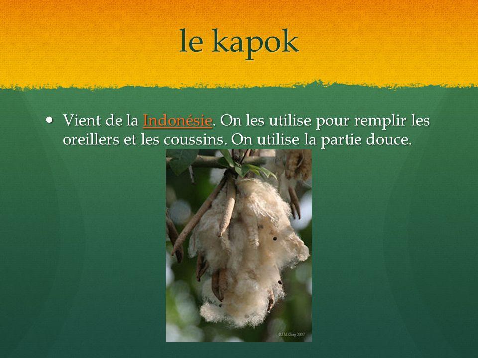 le kapok Vient de la Indonésie. On les utilise pour remplir les oreillers et les coussins.