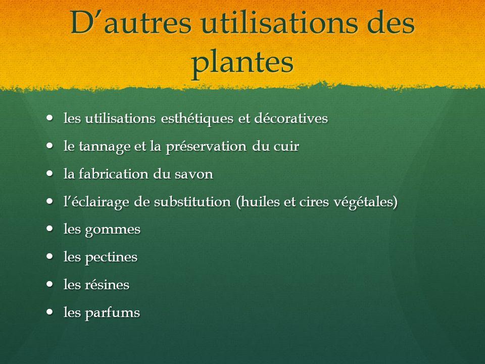 D'autres utilisations des plantes