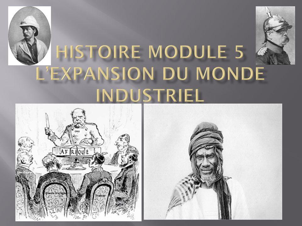 Histoire Module 5 L'expansion du monde industriel