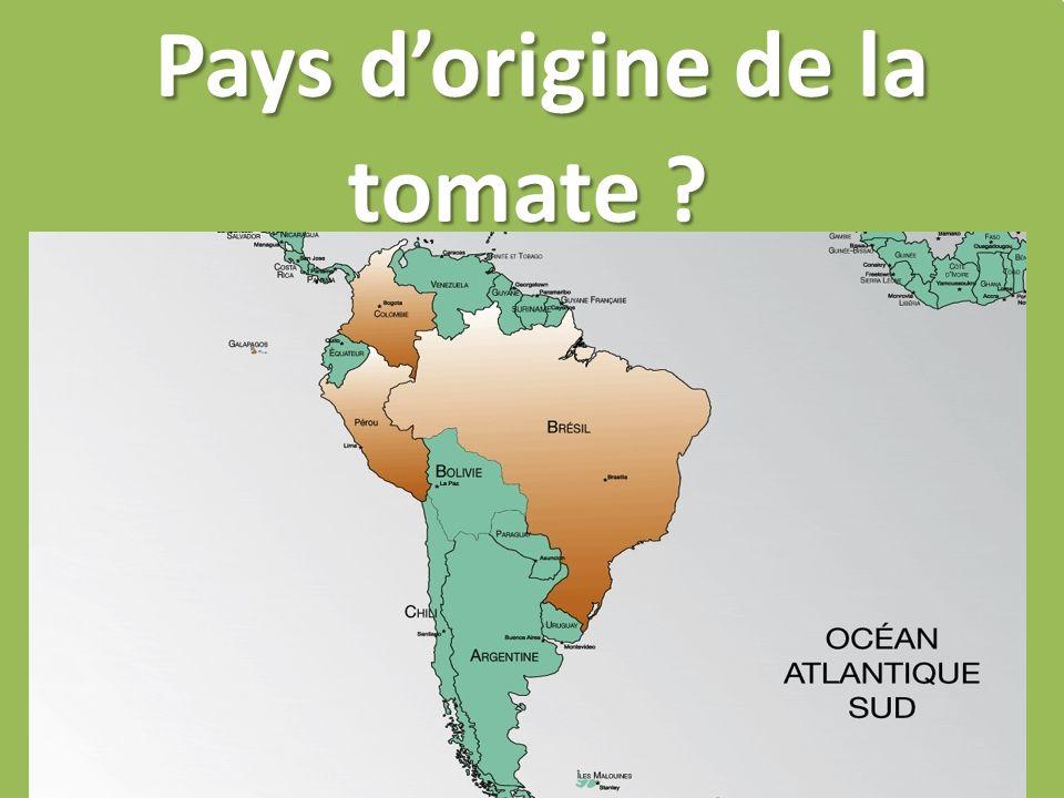 Pays d'origine de la tomate