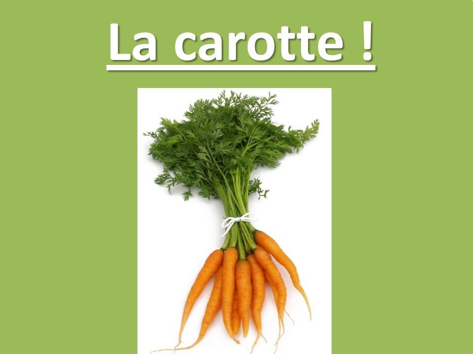 La carotte !