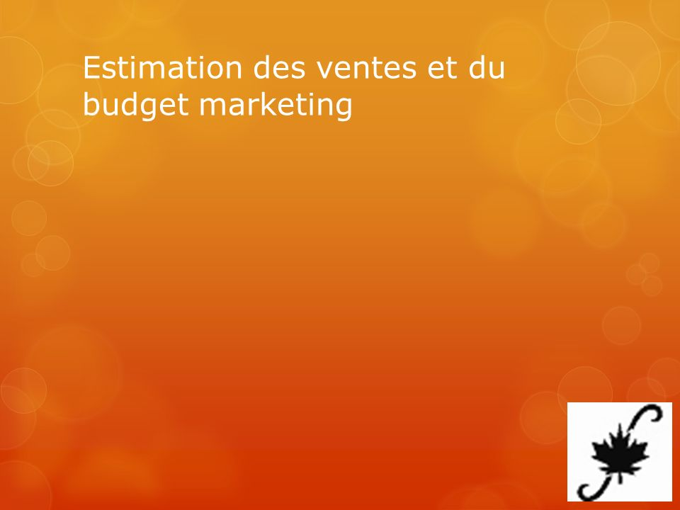 Estimation des ventes et du budget marketing