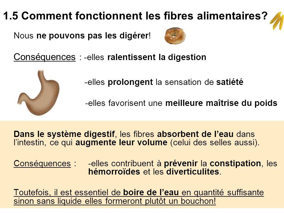 1.5 Comment fonctionnent les fibres alimentaires