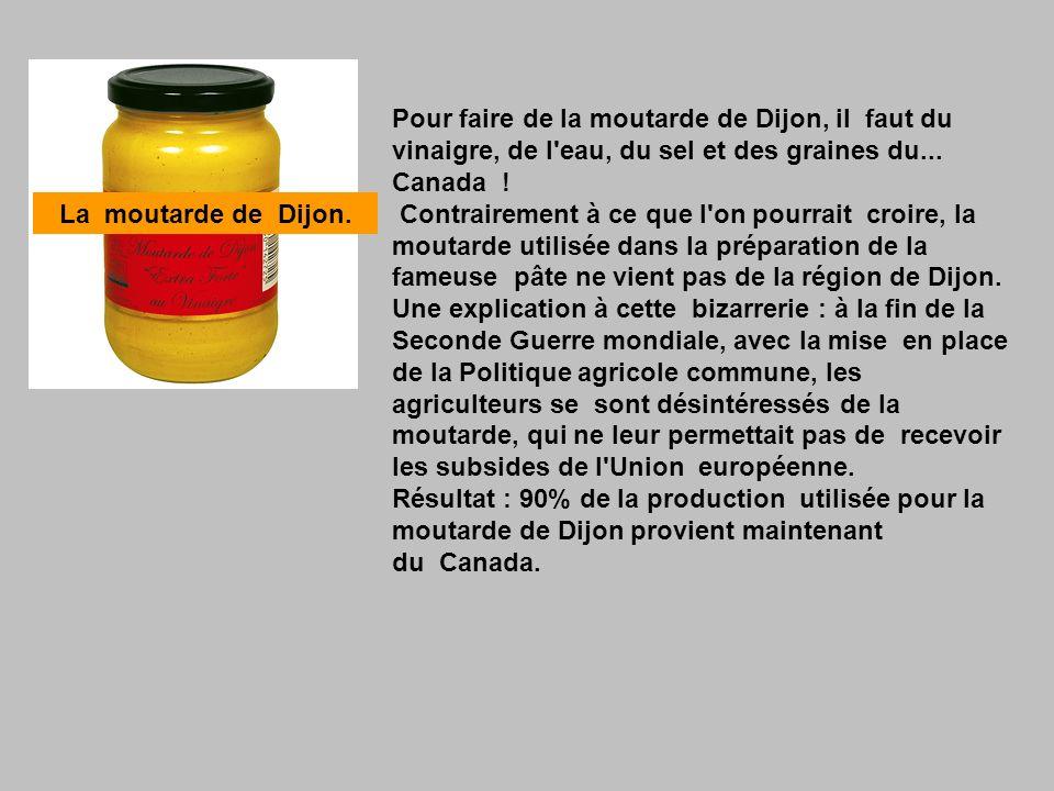 Pour faire de la moutarde de Dijon, il faut du vinaigre, de l eau, du sel et des graines du... Canada ! Contrairement à ce que l on pourrait croire, la moutarde utilisée dans la préparation de la fameuse pâte ne vient pas de la région de Dijon. Une explication à cette bizarrerie : à la fin de la Seconde Guerre mondiale, avec la mise en place de la Politique agricole commune, les agriculteurs se sont désintéressés de la moutarde, qui ne leur permettait pas de recevoir les subsides de l Union européenne. Résultat : 90% de la production utilisée pour la moutarde de Dijon provient maintenant du Canada.