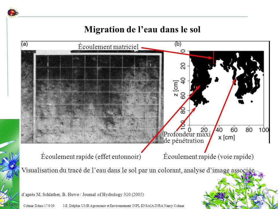 Migration de l'eau dans le sol