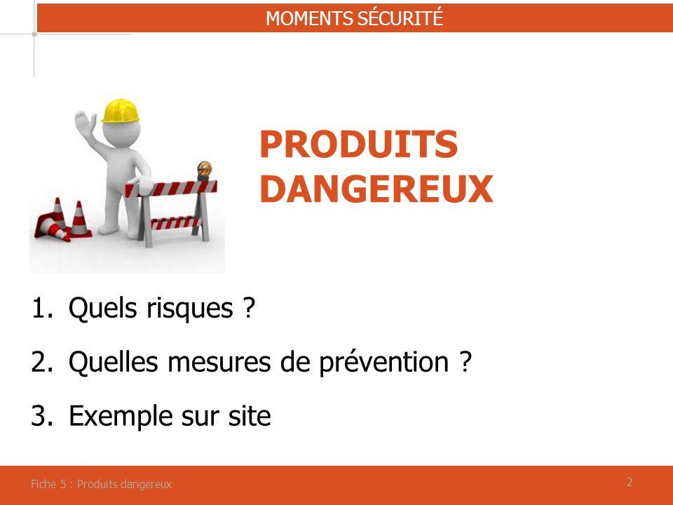 PRODUITS DANGEREUX Quels risques Quelles mesures de prévention