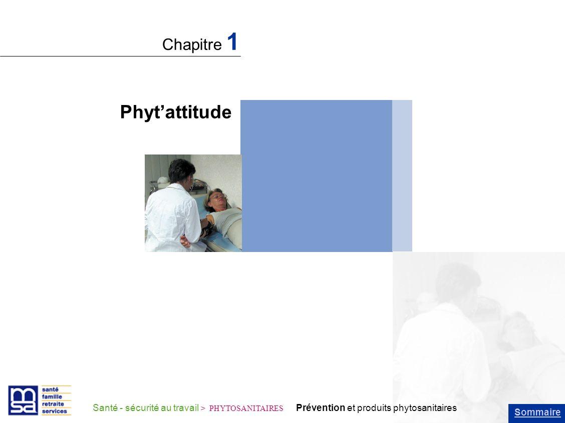 Phyt'attitude Chapitre 1