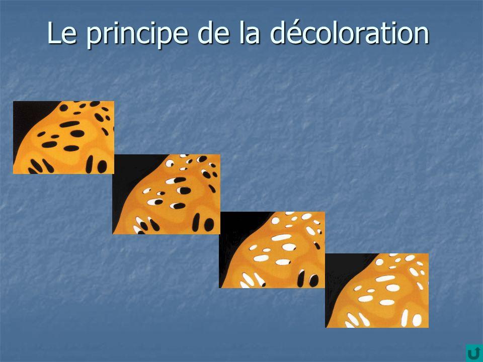 Le principe de la décoloration