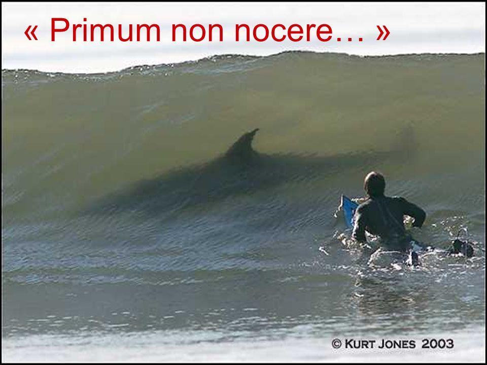 « Primum non nocere… »
