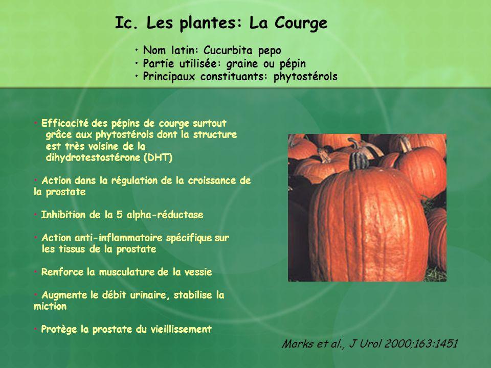 Ic. Les plantes: La Courge
