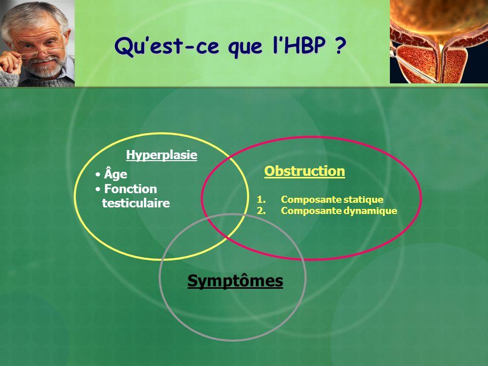 Qu'est-ce que l'HBP Symptômes Obstruction Hyperplasie Âge Fonction