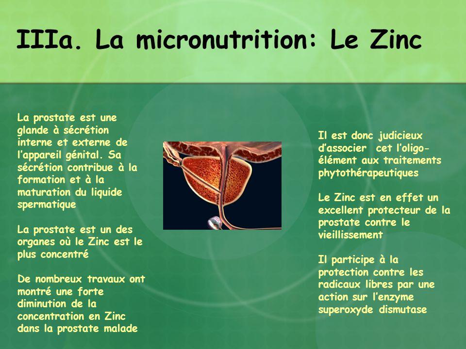 IIIa. La micronutrition: Le Zinc