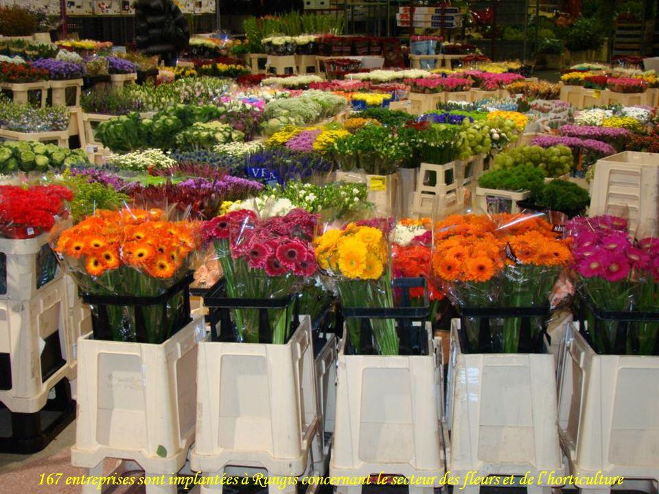 167 entreprises sont implantées à Rungis concernant le secteur des fleurs et de l'horticulture