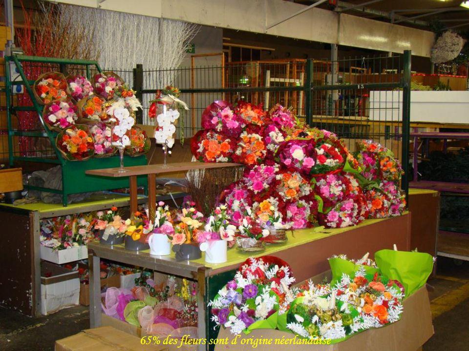 65% des fleurs sont d'origine néerlandaise
