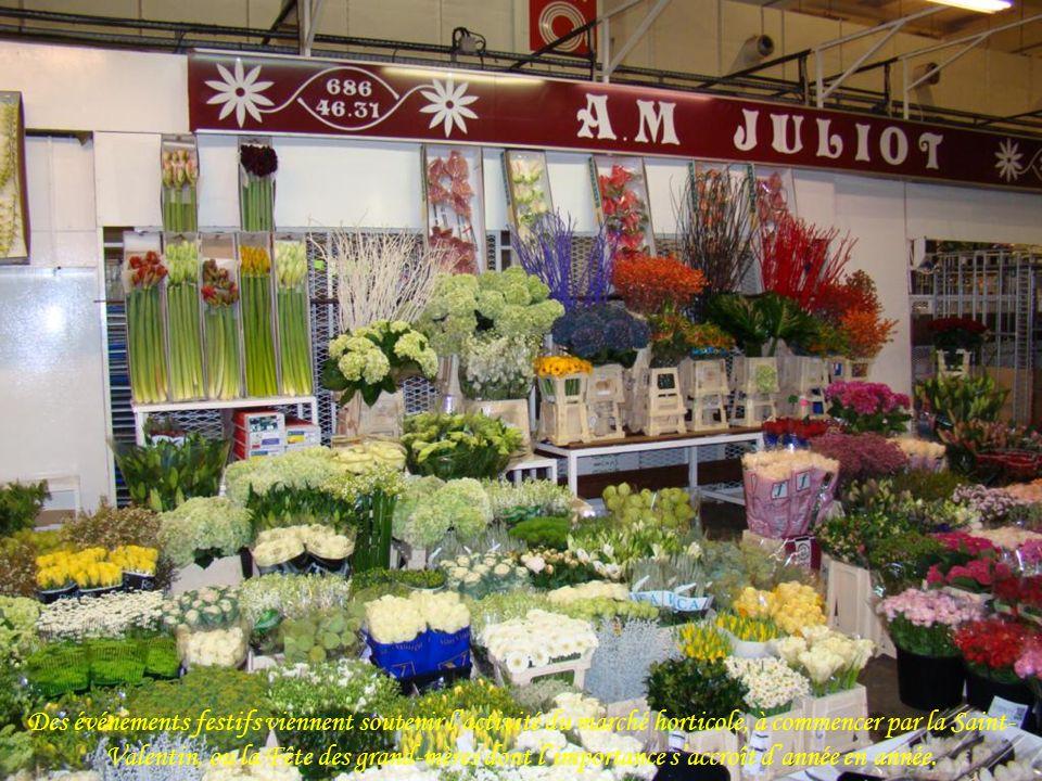 Des événements festifs viennent soutenir l'activité du marché horticole, à commencer par la Saint-Valentin, ou la Fête des grand-mères dont l'importance s'accroît d'année en année.