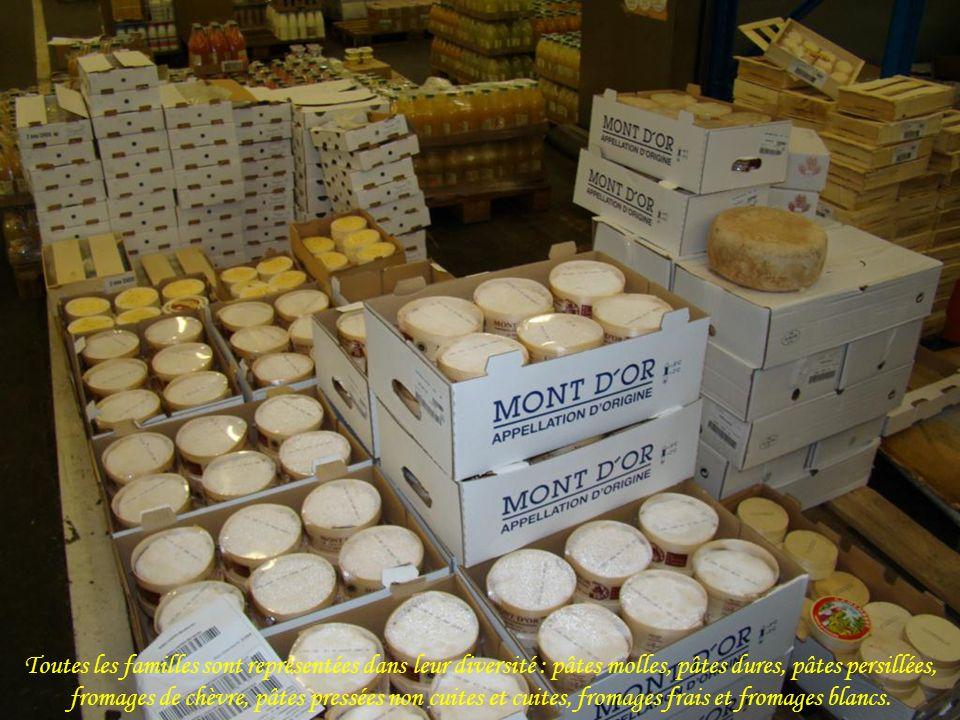 Toutes les familles sont représentées dans leur diversité : pâtes molles, pâtes dures, pâtes persillées, fromages de chèvre, pâtes pressées non cuites et cuites, fromages frais et fromages blancs.