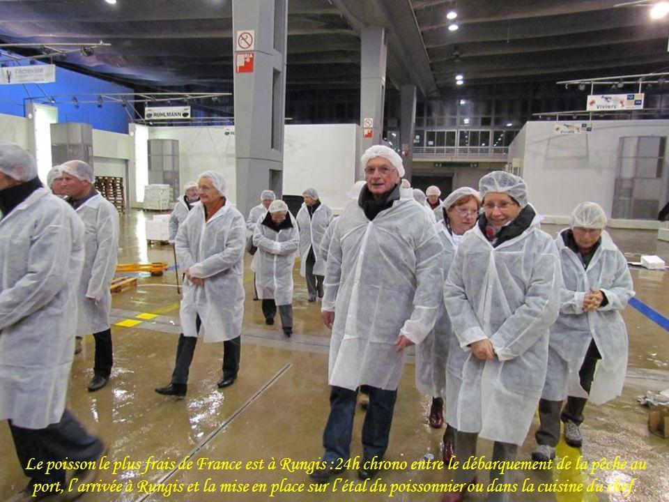 Le poisson le plus frais de France est à Rungis :24h chrono entre le débarquement de la pêche au port, l'arrivée à Rungis et la mise en place sur l'étal du poissonnier ou dans la cuisine du chef.