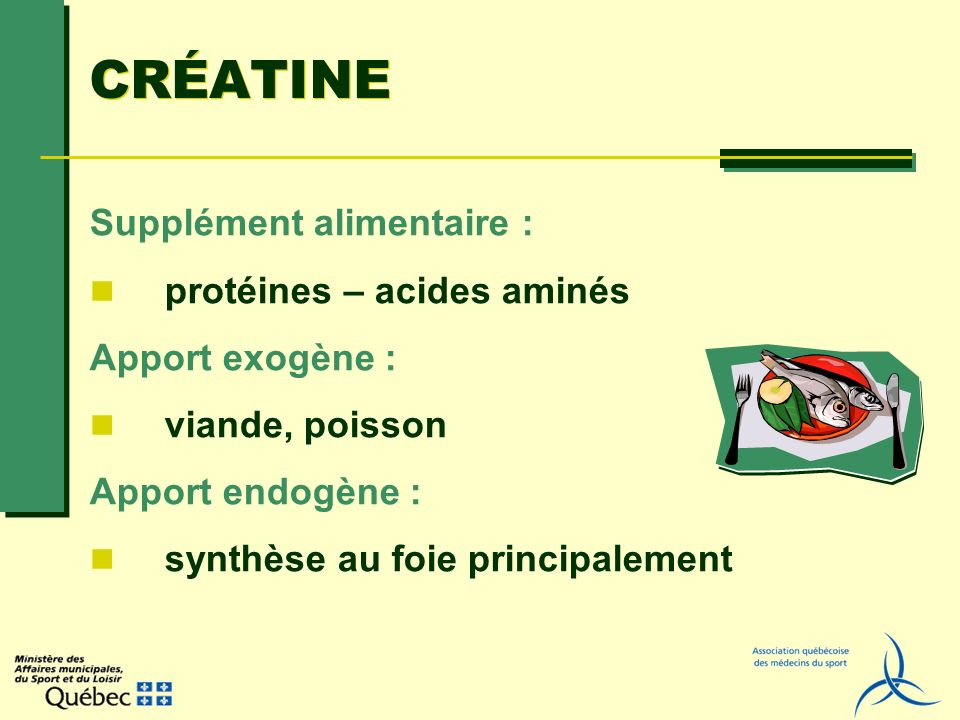 CRÉATINE Supplément alimentaire : protéines – acides aminés