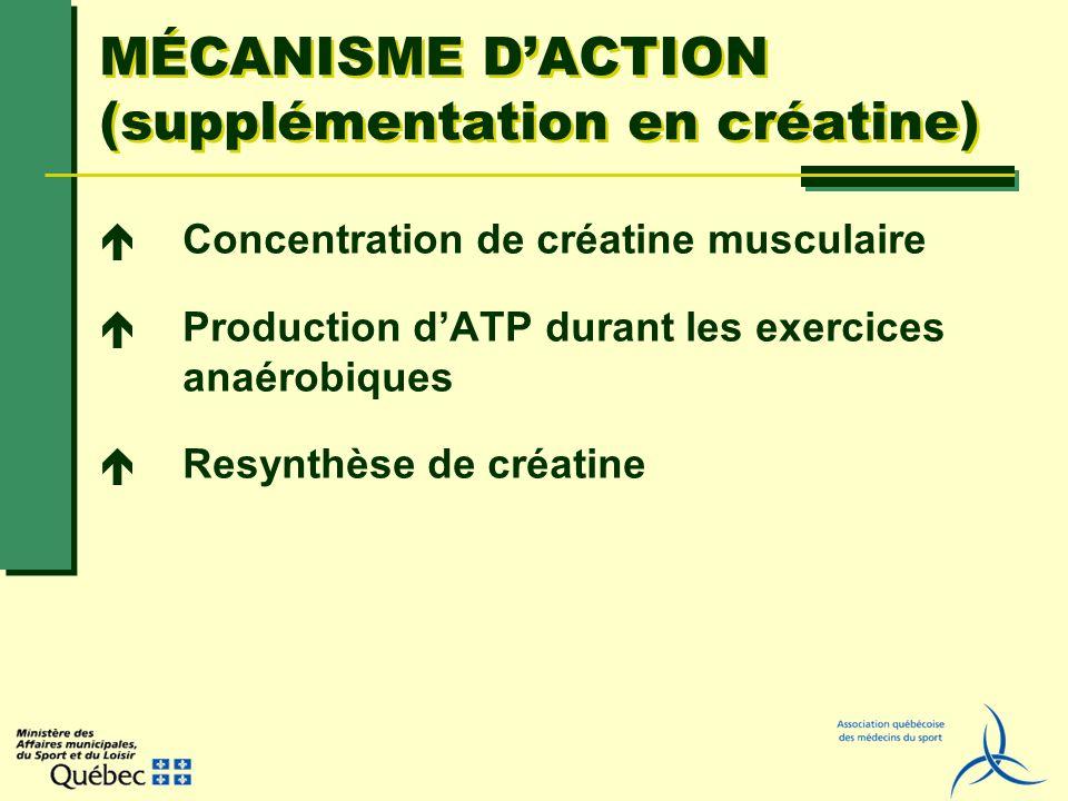 MÉCANISME D'ACTION (supplémentation en créatine)