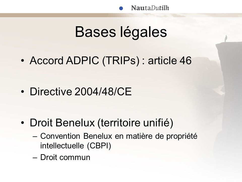 Bases légales Accord ADPIC (TRIPs) : article 46 Directive 2004/48/CE