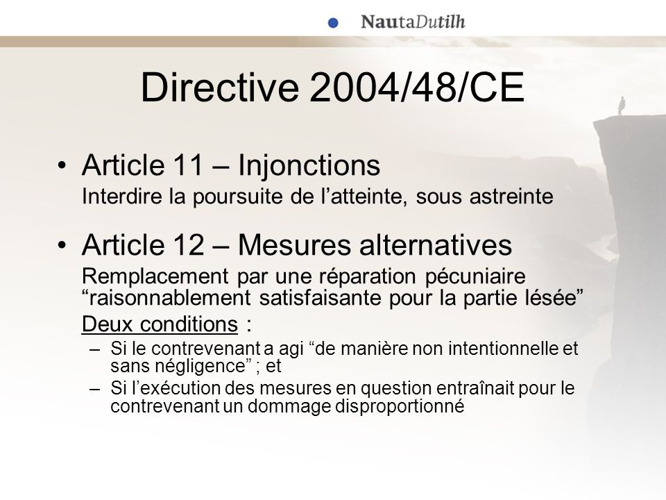 Directive 2004/48/CE Article 11 – Injonctions