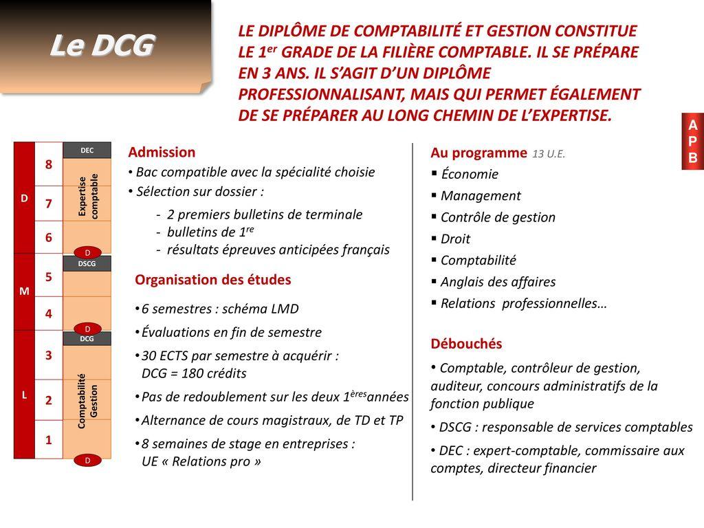cours controle de gestion dcg pdf