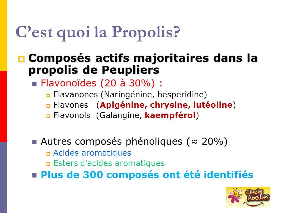 C'est quoi la Propolis Composés actifs majoritaires dans la propolis de Peupliers. Flavonoïdes (20 à 30%) :