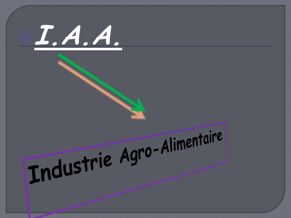 I.A.A. Industrie Agro-Alimentaire