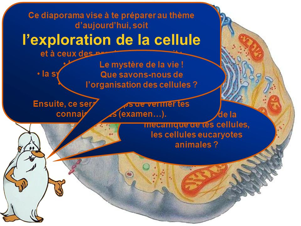 l'exploration de la cellule