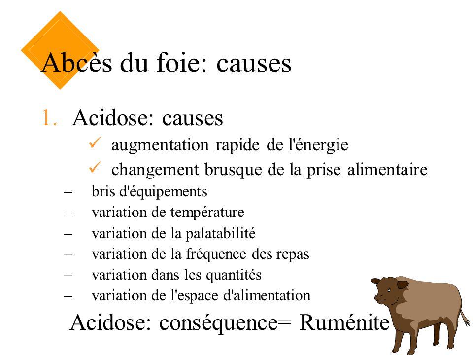 Abcès du foie: causes Acidose: causes Acidose: conséquence= Ruménite