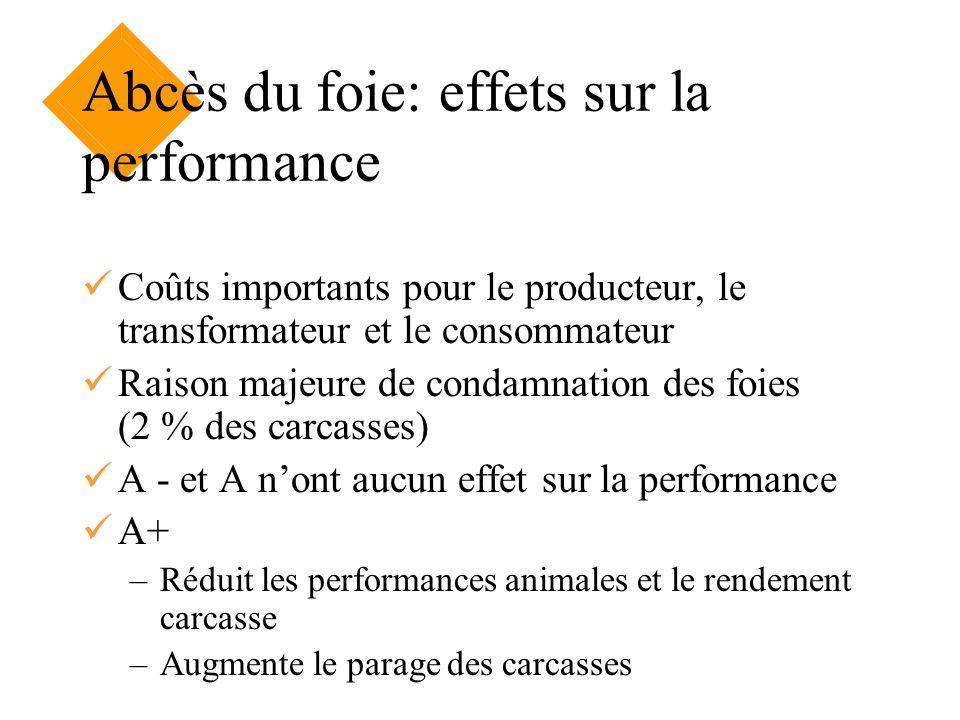 Abcès du foie: effets sur la performance