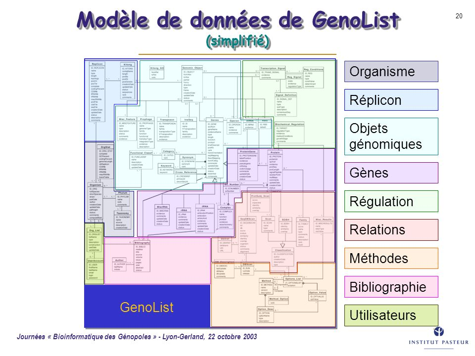 Modèle de données de GenoList (simplifié)