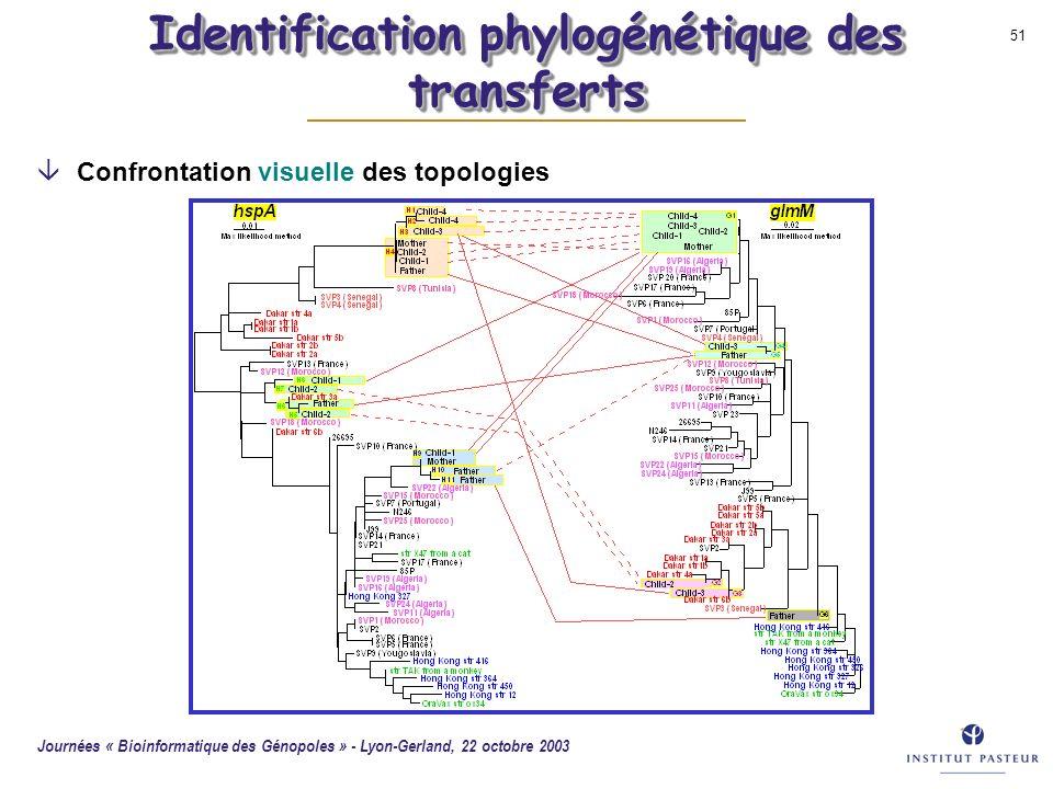 Identification phylogénétique des transferts