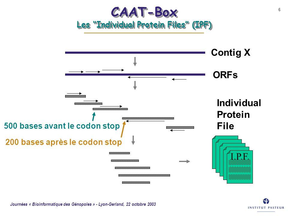 CAAT-Box Les Individual Protein Files (IPF)