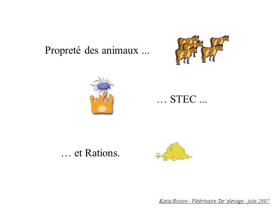 Propreté des animaux ... … STEC ... … et Rations.