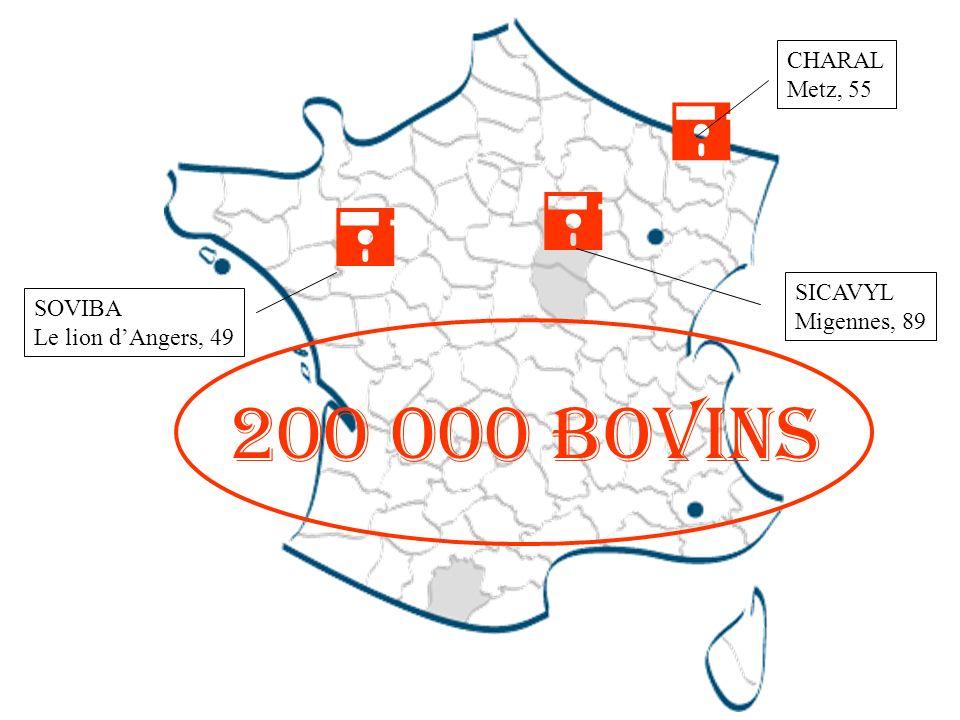  200 000 bovins CHARAL Metz, 55 SICAVYL SOVIBA Migennes, 89