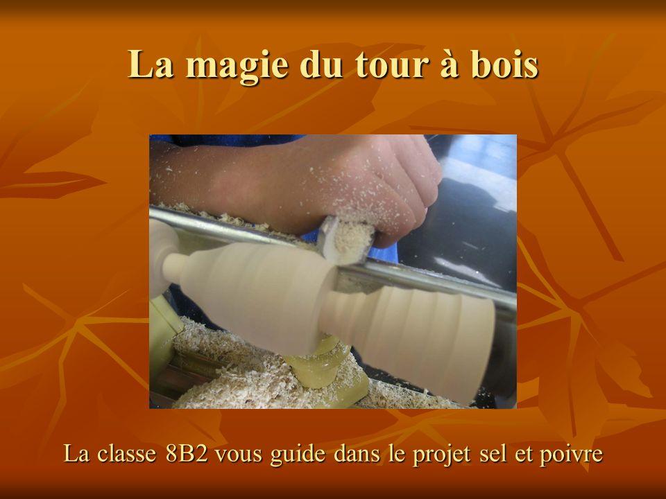 La classe 8B2 vous guide dans le projet sel et poivre