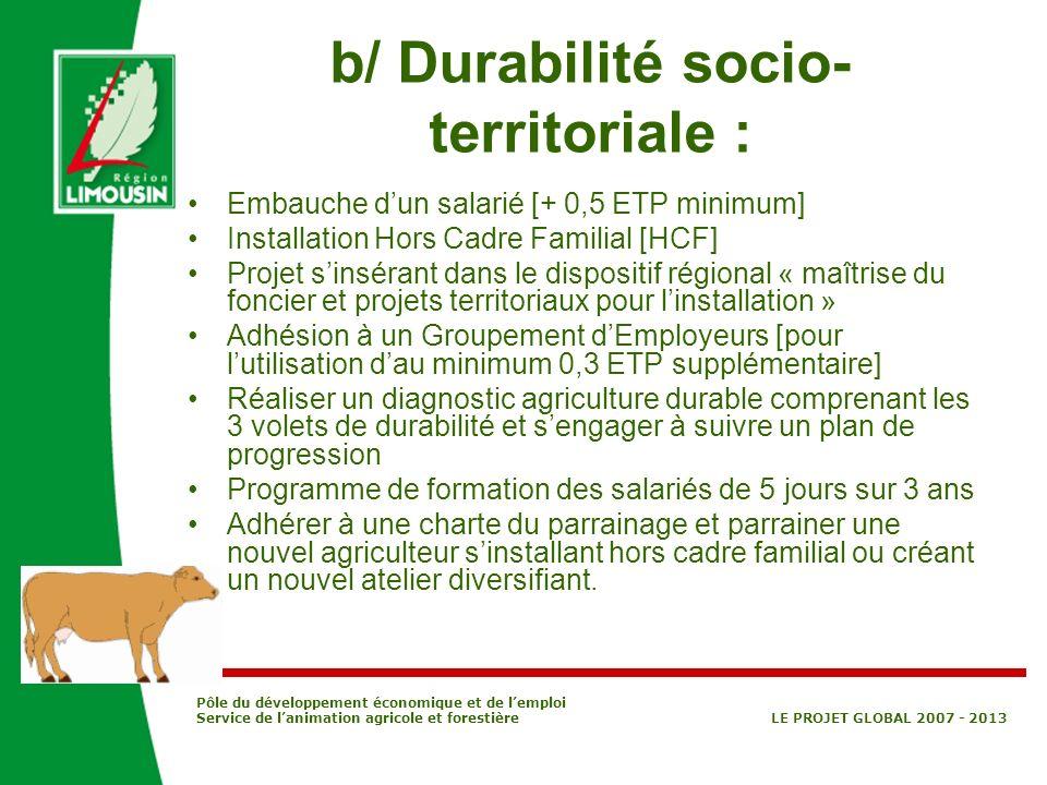 b/ Durabilité socio-territoriale :