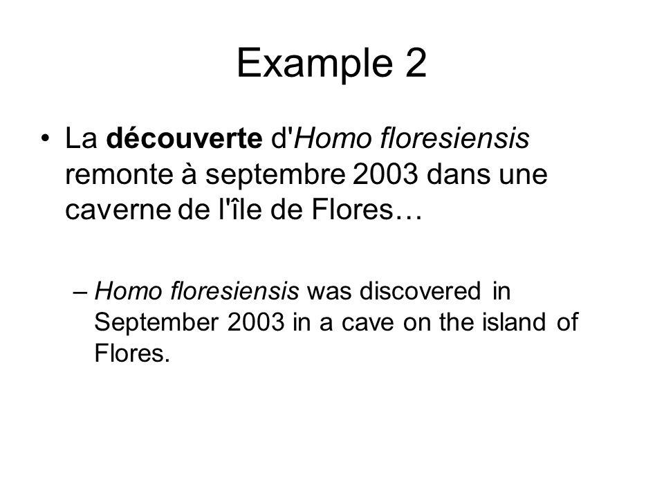 Example 2 La découverte d Homo floresiensis remonte à septembre 2003 dans une caverne de l île de Flores…