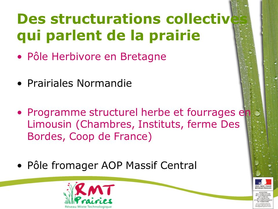Des structurations collectives qui parlent de la prairie