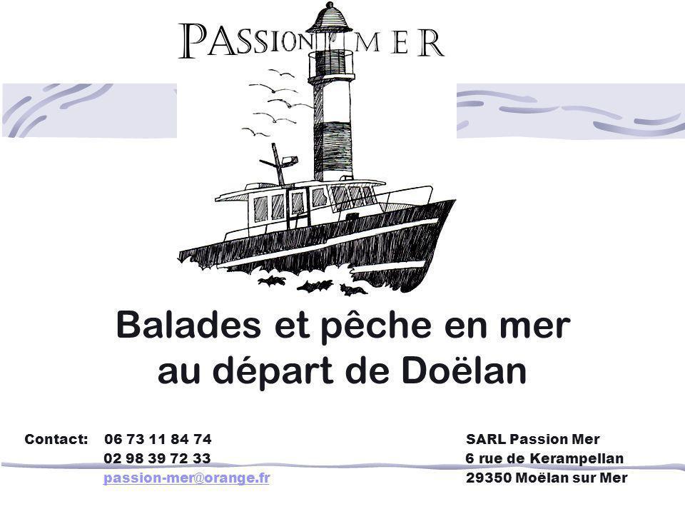Balades et pêche en mer au départ de Doëlan