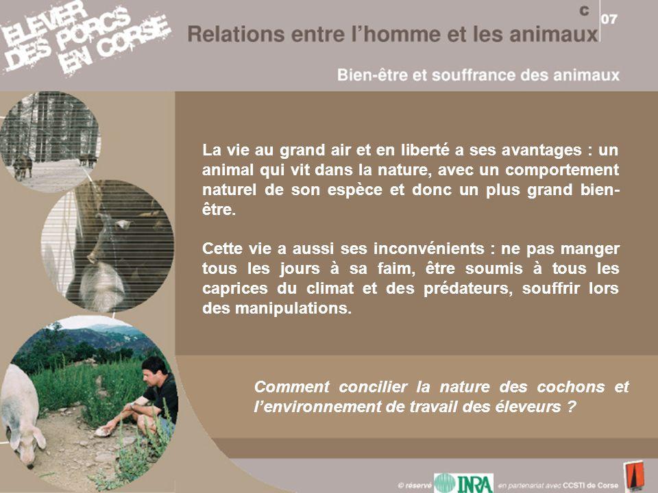 La vie au grand air et en liberté a ses avantages : un animal qui vit dans la nature, avec un comportement naturel de son espèce et donc un plus grand bien-être.