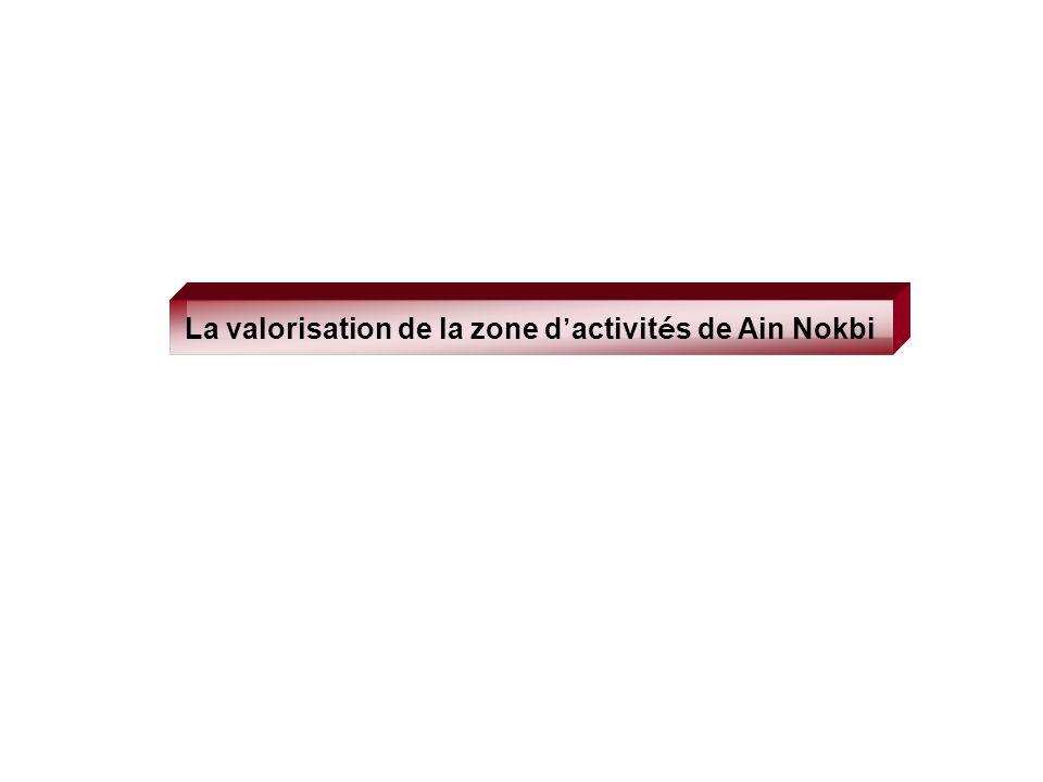 La valorisation de la zone d'activités de Ain Nokbi