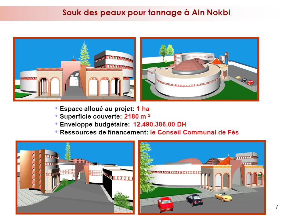 Souk des peaux pour tannage à Ain Nokbi