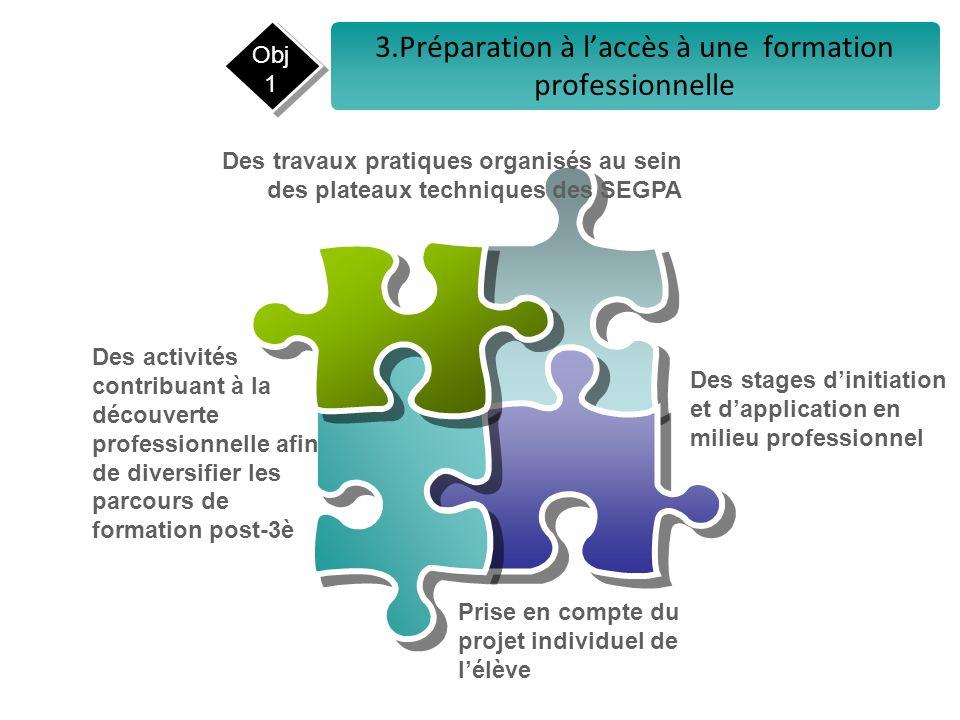3.Préparation à l'accès à une formation professionnelle